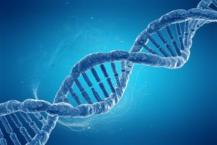 Das Gotteswerkzeug heißt CRISPR/Cas9